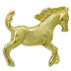 Horse Cast Stock Jewelry Pin